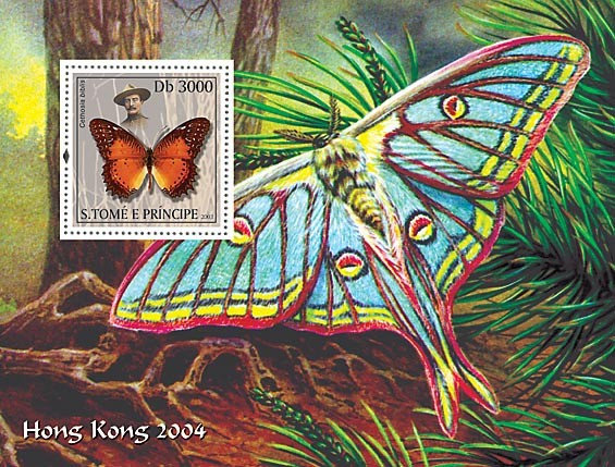 Butterflies & Scouts s/s - Issue of Sao Tome and Principe postage stamps