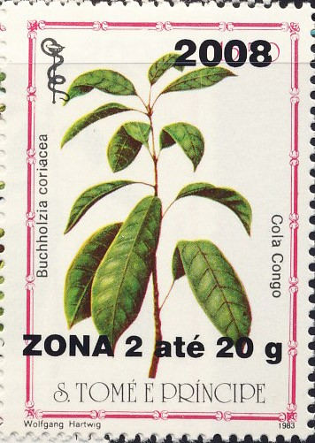Buchhalzia coriacea - Issue of Sao Tome and Principe postage stamps