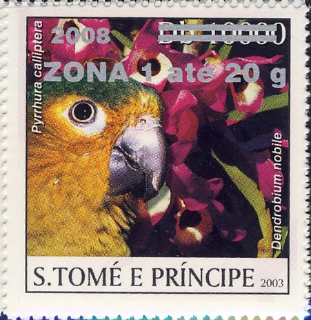 Parrot & red flower (2008) - silver -  ZONA 1 ate 20g - Issue of Sao Tome and Principe postage stamps