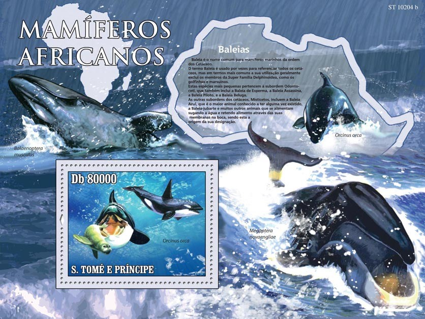 Animals of Africa - Whales - Issue of Sao Tome and Principe postage stamps