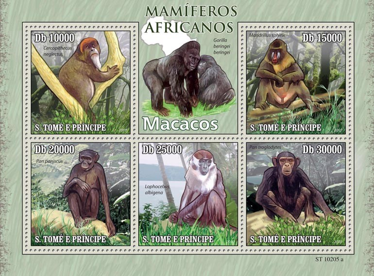 Monkeys - Issue of Sao Tome and Principe postage stamps