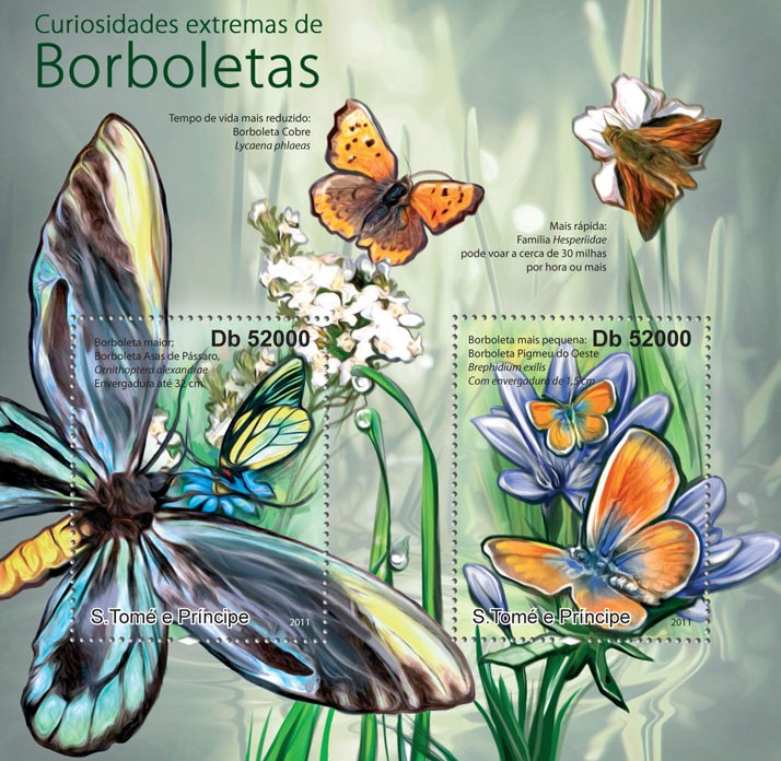 Butterflies Extremes. - Issue of Sao Tome and Principe postage stamps