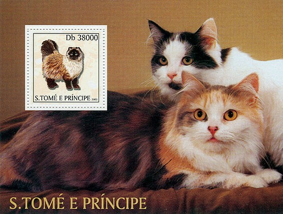 Cats s/s - Issue of Sao Tome and Principe postage stamps