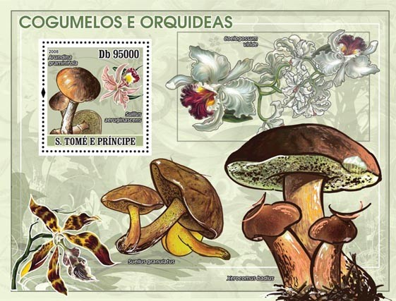 Mushrooms, Orchids s/s - Issue of Sao Tome and Principe postage stamps