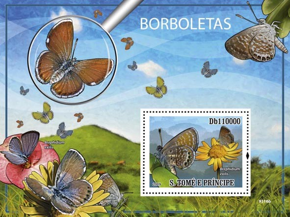 The Worlds smallest Butterfly - Issue of Sao Tome and Principe postage stamps
