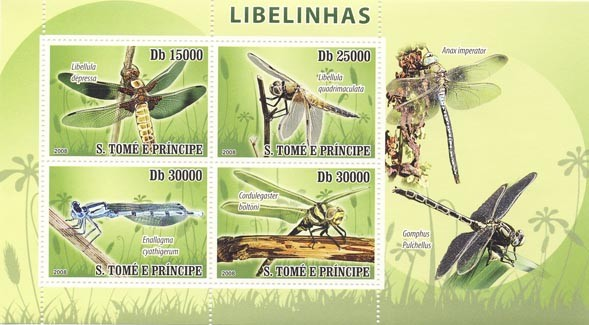 Issues of 2008 year  Dragon-fly - Issue of Sao Tome and Principe postage stamps