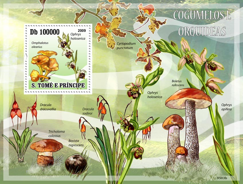 Mushrooms & Orchids - Issue of Sao Tome and Principe postage stamps