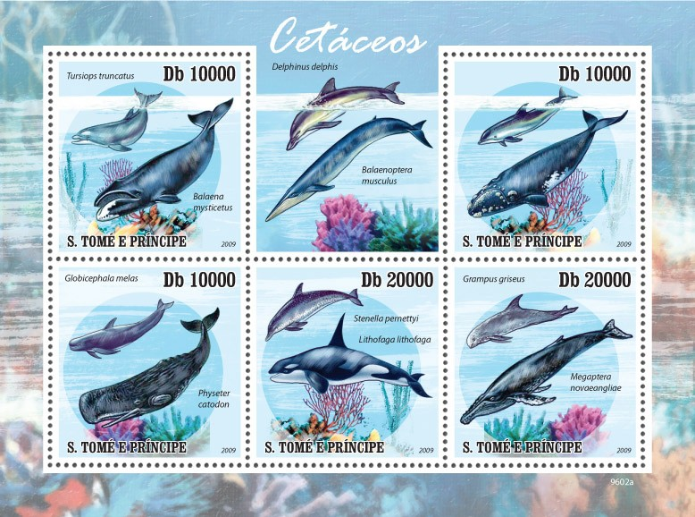 Marine life -Cetaceans  ( whales, dolphins ) - Issue of Sao Tome and Principe postage stamps